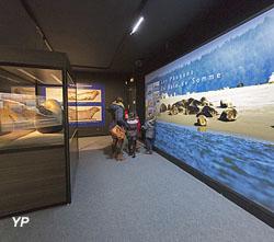 Salle consacrée aux phoques