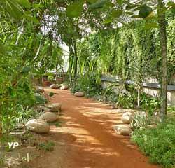 Jardin Botanique de Tours - serres Biodivers Afrique du Sud