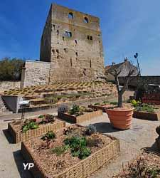 Tour Montjoie (Ville de Conflans-sainte-Honorine)