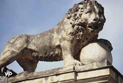 Centre Historique - chasse aux lions