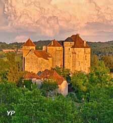 Enclos féodal des Châteaux de Saint-Hilaire et des Plas, État des lieux à l'achèvement du gros-œuvre - couverture de Plas, 1997 (H & MJ Cantegreil)