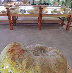 Musée Armand Viré (Ville de Luzech)