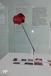 Musée Franco-Australien - Coquelicot, Fleur du Souvenir