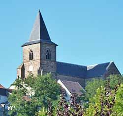 Site médiéval du Vieux Hombourg (L. VIon)