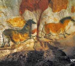 Les cerfs (Semitour)