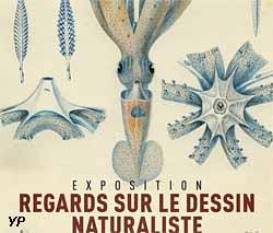 Muséum départemental du Var - exposition temporaire 2018 (Muséum départemental du Var)