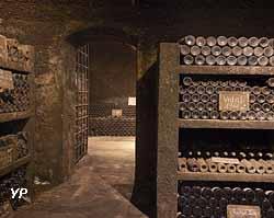 Cave souterraine des Terres des Templiers (Terres des Templiers)