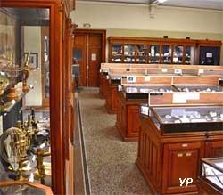 Salle de classification des espèces minérales