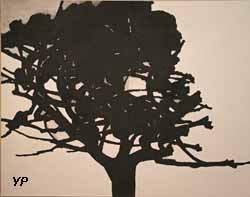 Le Grand Chêne de Viols-le-Fort (Alexandre Hollan, 2015)