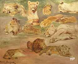 Étude de lions (Rosa Bonheur)