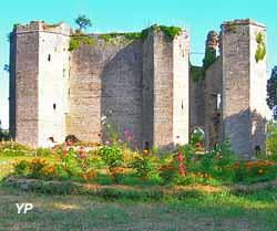 Château de Montfort (Association Mons fortis)