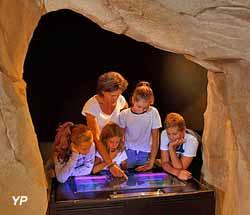 Musée de l'ours des cavernes (Loïc Perron)