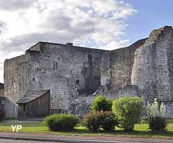 Forteresse de Chatel-sur-Moselle (Association du Vieux Châtel)