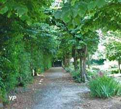 Parc de la Mairie et sa charmille (Mémoire & Patrimoine)