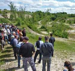 Visite du site de l'ancienne carrière de Saint-Cricq