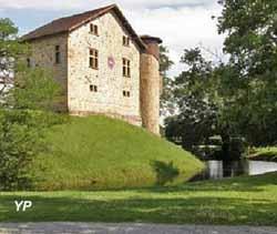 Château de Camou (Château de Camou)
