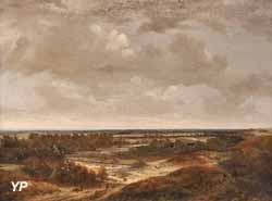Paysage de dunes (Jan Vermeer van Haarlem l'Ancien)