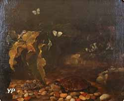 Tortue et crabe (Paolo Porpora)