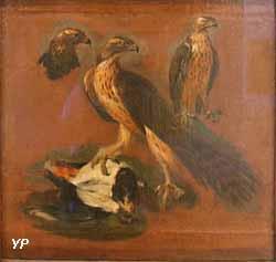 Étude de faucons (Pieter Boel)