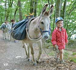 Ferme pédagogique Les ânes de Vassivière