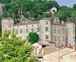 Château de Vogüé (Château de Vogüé)