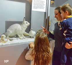 Ecomusée le Refuge des Animaux (Le refuge des animaux)