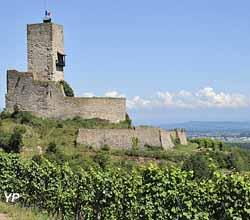 Château du Wineck (Office de Toursme de la vallée de Kaysersberg)