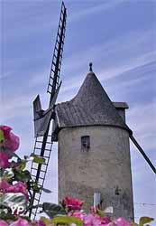 Moulins de Calon (Vignobles Boidron)