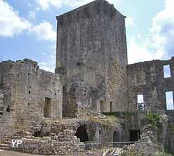 Château de Montclus (Association des Amis du chateau de Montclus)