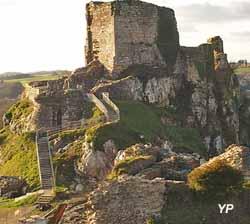 château Roc'h Morvan (La Roche-Maurice)