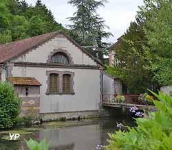 Lavoir Saint-Julien du Sault (Mairie de Saint-Julien-du-Sault)