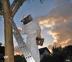 Tenue d'apiculteur