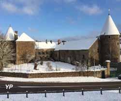 Vieux Château (Jacques DESMARQUEST)