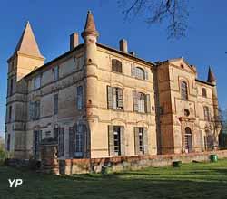 Château de Bonrepos-Riquet (association SVDBR (Sauvegarde & Valorisation du Domaine de Bonrepos-Riquet ))