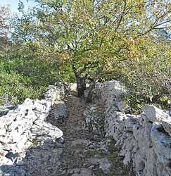 Dolmens du chemin des Combettes (Association Dolmens et patrimoine de Labeaume)