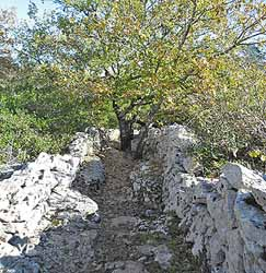 Dolmens du chemin des Combettes