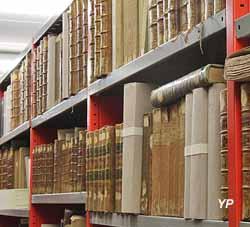 Médiathèque le Dôme de Saint-Claude