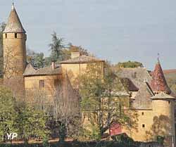 Château de Jarnioux (CESJEL SAS)
