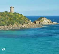 Fautea (Collectivité de Corse)