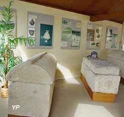 Salle des sarcophages (Mairie de Saint-Parres aux Tertres)