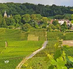Village de Hautvillers (Association les Amis d'Hautvillers)