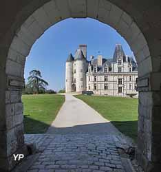 Château (Château de la Rochefoucauld)