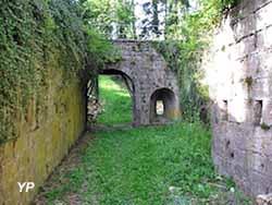 Cité de la Mothe-en-Bassigny (Association pour la Mothe)
