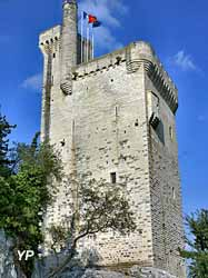 Tour Philippe le Bel (Mairie de Villeneuve lez Avignon)