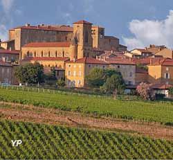 Visite de Theizé (ville de Villefranche)